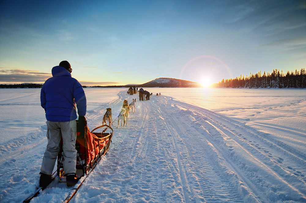 Arctic dogsledding