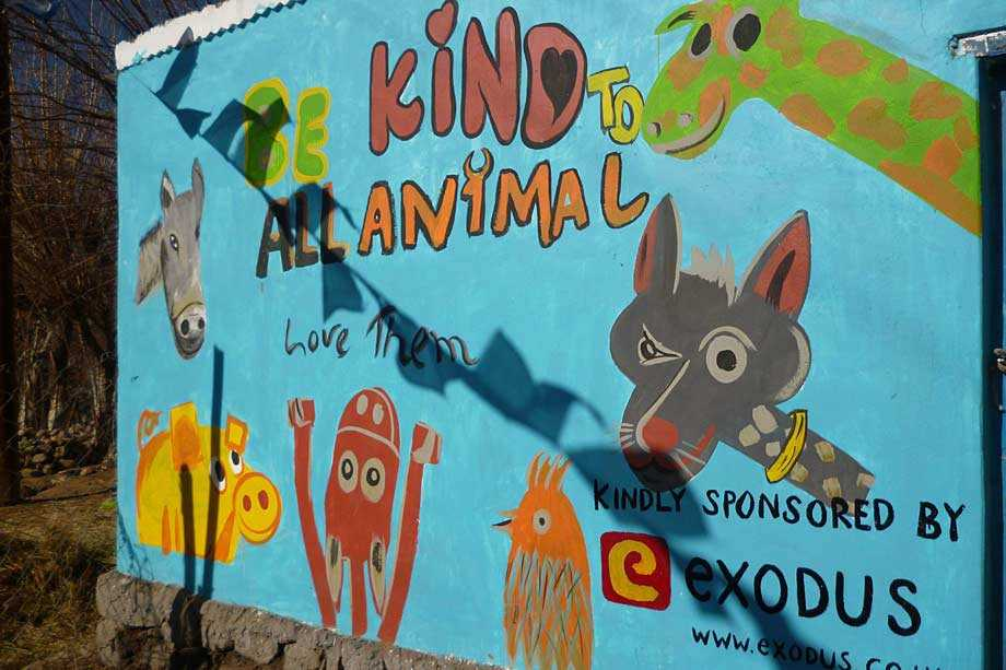 """Be kind to animals"" poster"