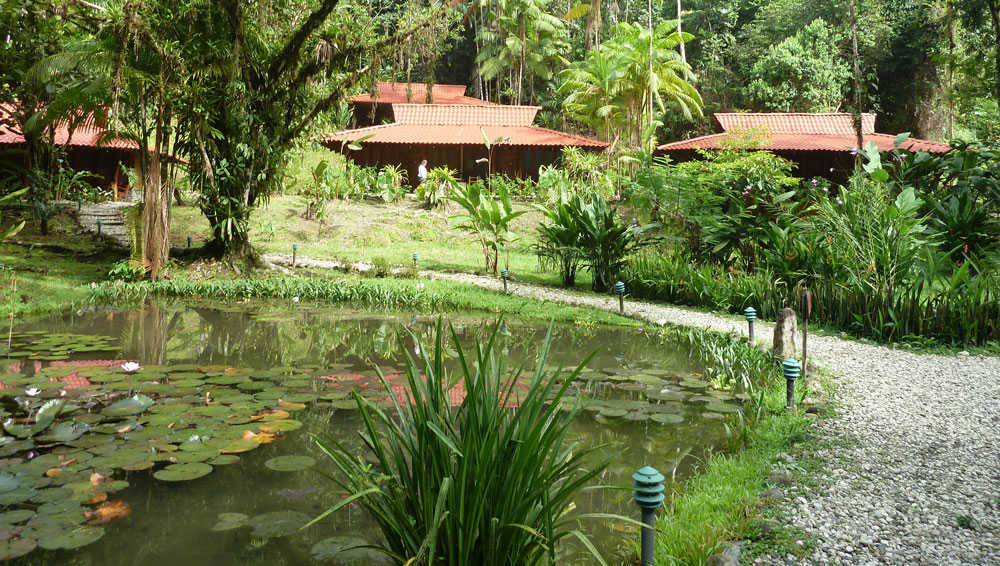 Esquinas Rainforest Lodge