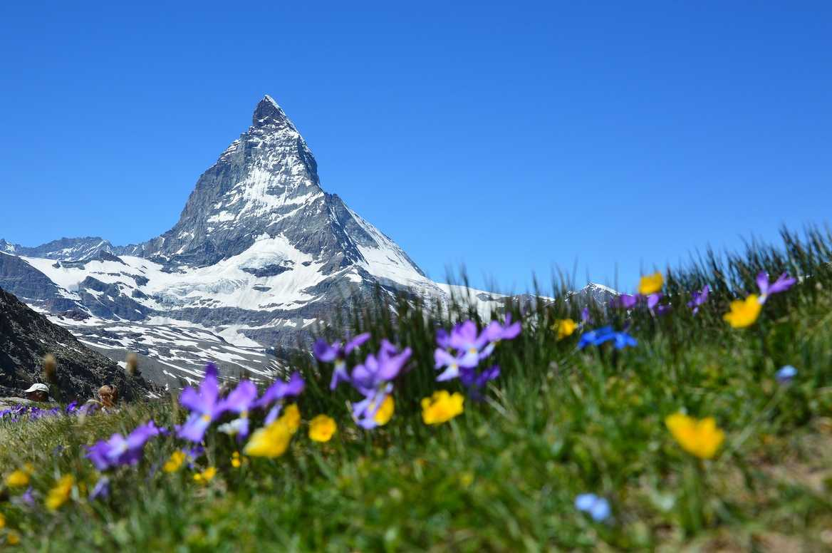 Spring at the Matterhorn, Switzerland
