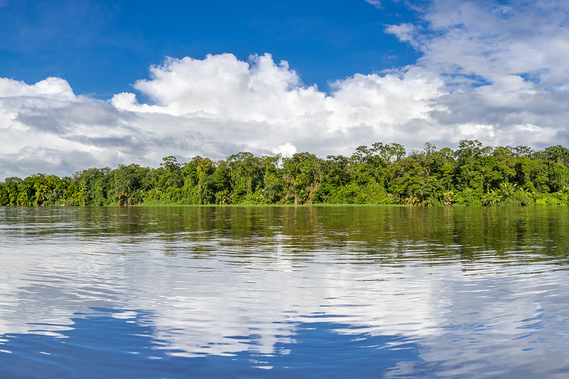 Tortuguero waterways, Costa Rica