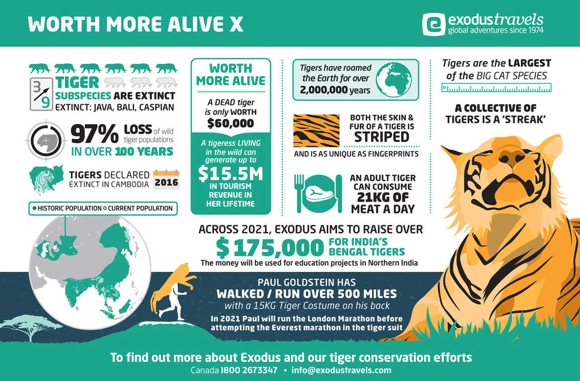 Worth More Alive Infographic