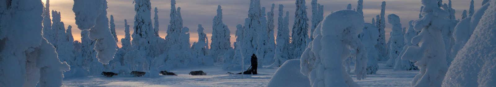 Riisitunturi National Park, Finland (photo by Erkki Ollila)