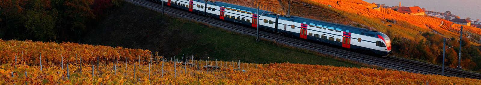 Geneva Train