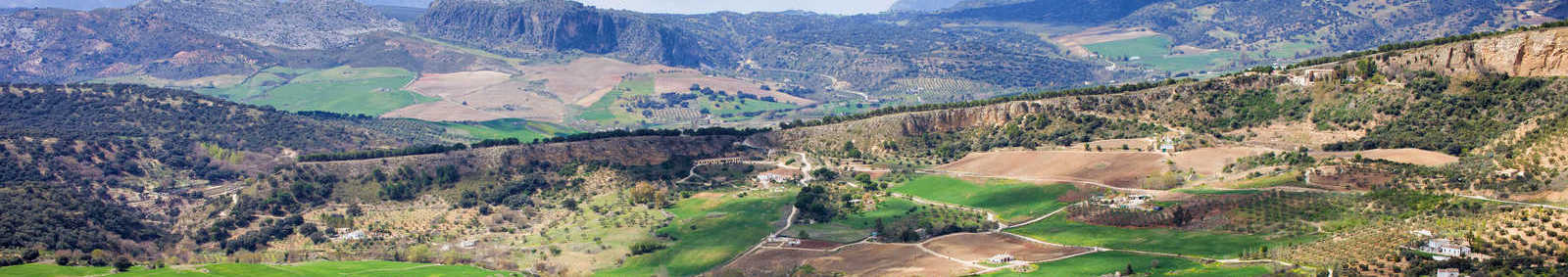 andaluician countryside