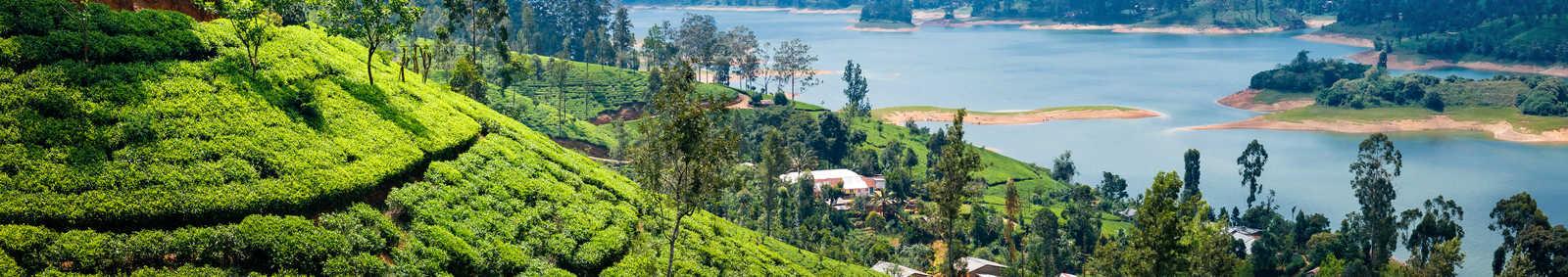 Sri Lankan vistas