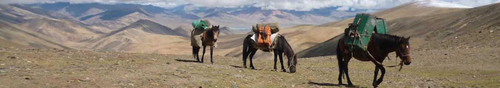 Ladakhi Himalaya