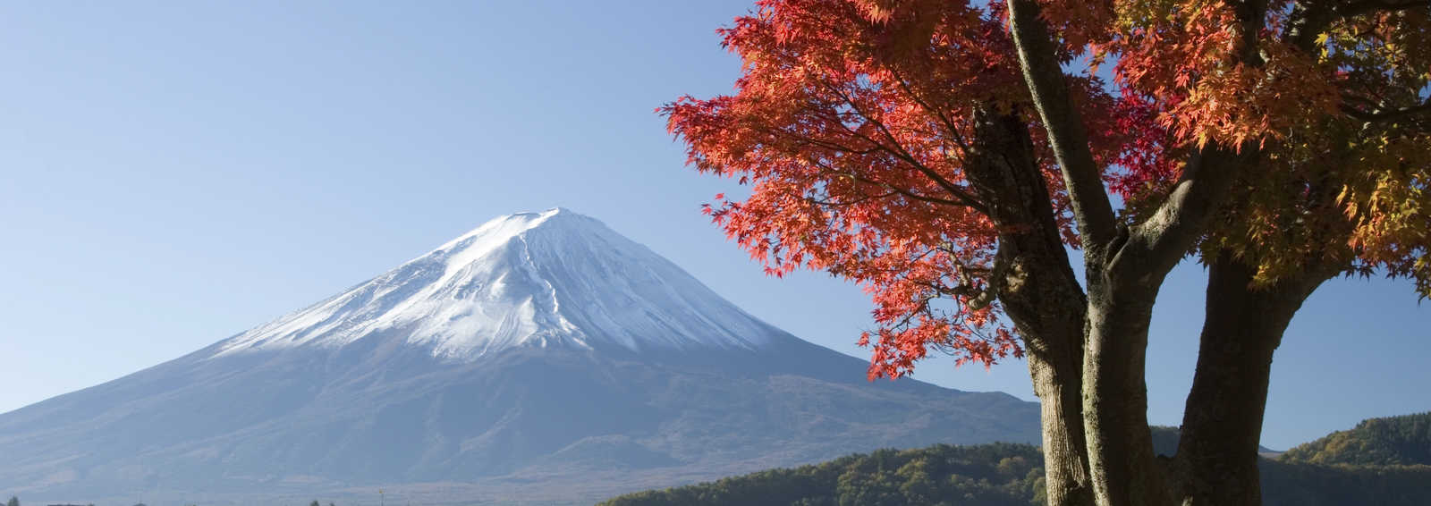Mt Fuji in Autumn, Japan