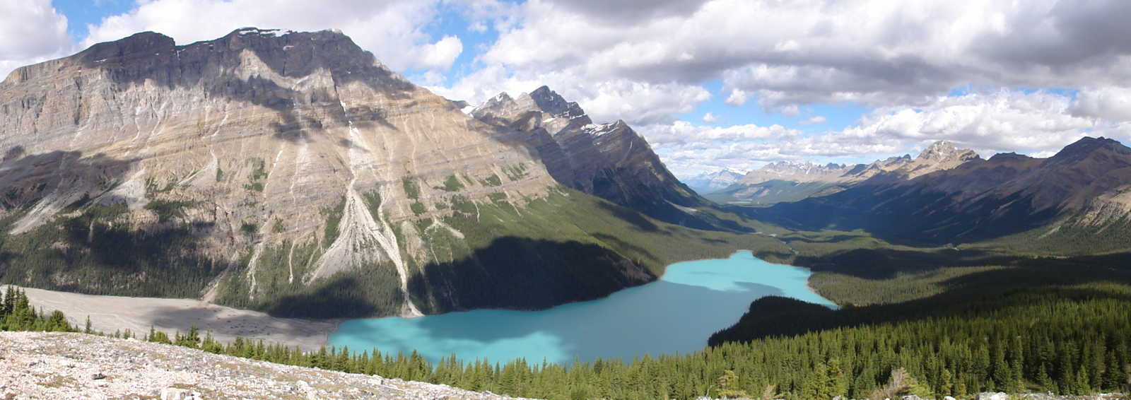 Peyto Lake in the Canadian Rockies, Canada