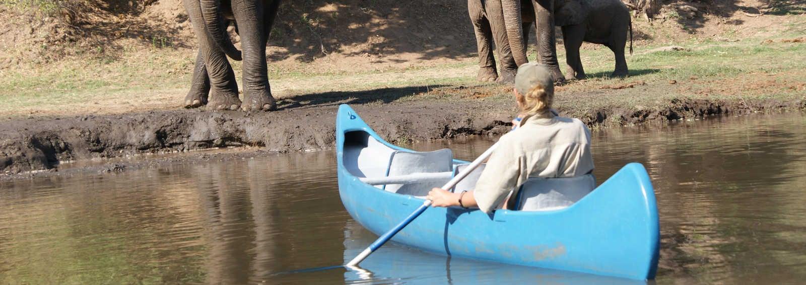 Canoeing on the Zambezi River