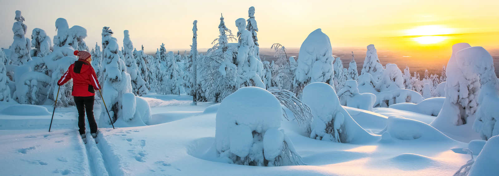 Woman cross country skiing in Lapland Finland in sunset