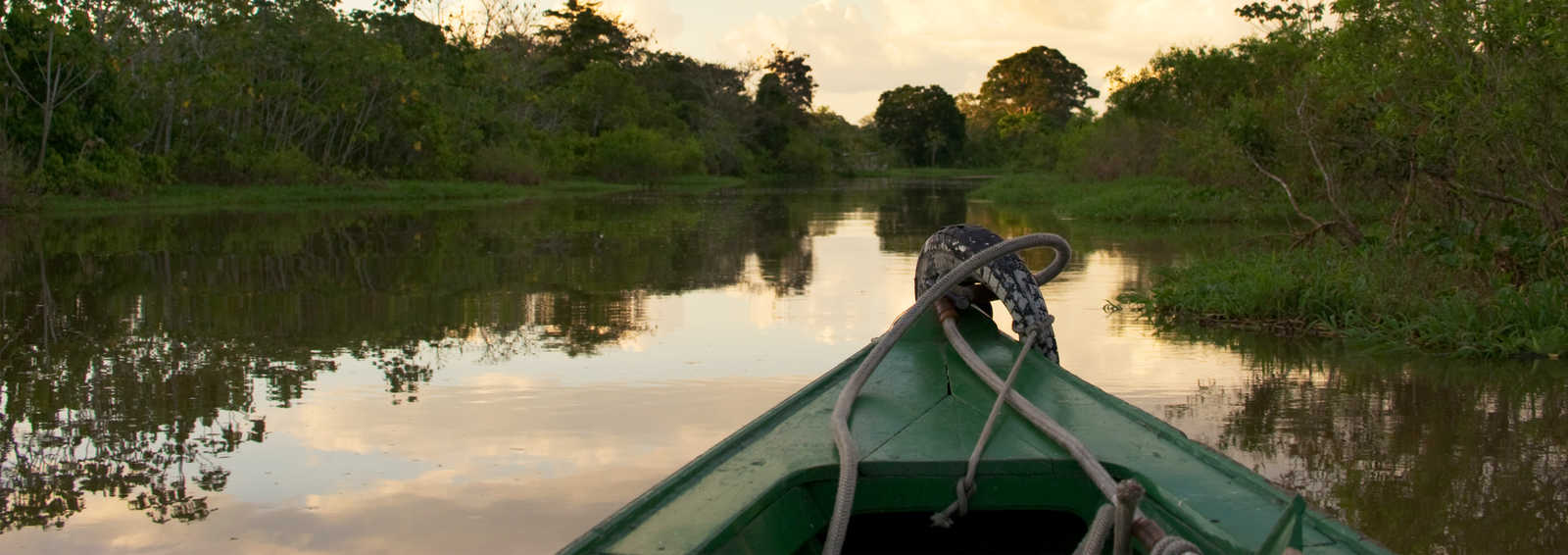 A small boat is sailing through the Amazon forest in Brazil at sunset