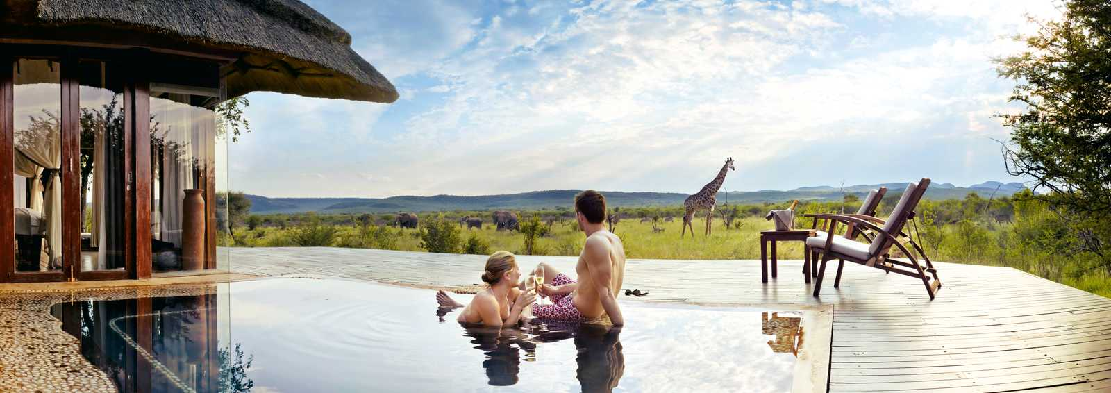 Pool with wildlife in South Africa