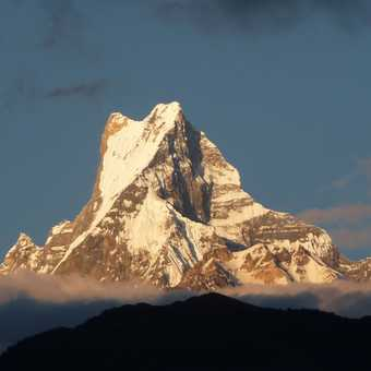 Machapuchare at sunset