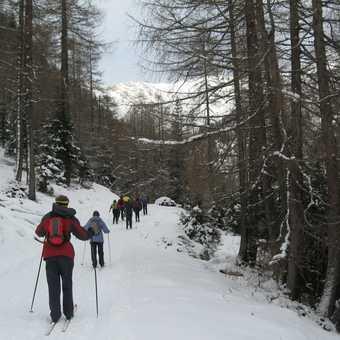 Day 5 Schmirn valley Through woods up to Kirche