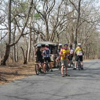 Cycling through the game reserve