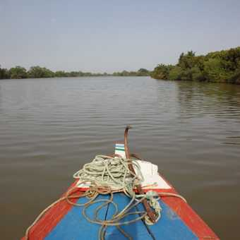 Gambia River trip