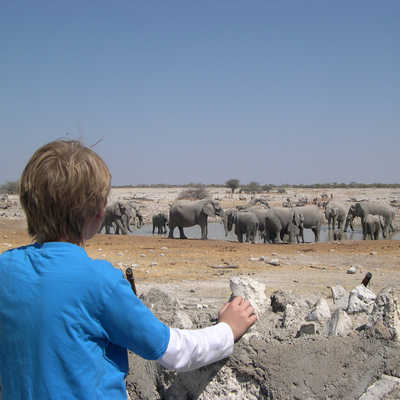 Kid looking at Elephants and waterhole, Etosha, Namibia