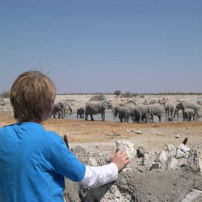 Kid looking at Elephants and waterhole, Etosha, Namibia