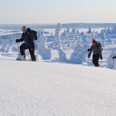 Heading up to the viewpoint. Riisitunturi National Park, Finland (photo by Erkki Ollila)