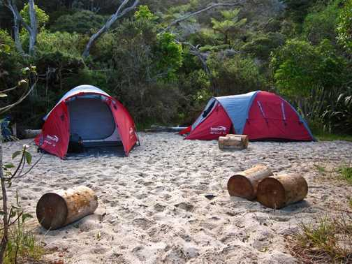 Camps on TLZ