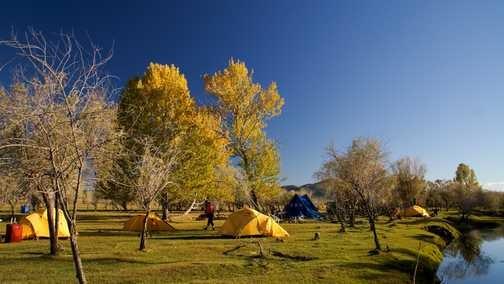 Superb Wild Campsites.