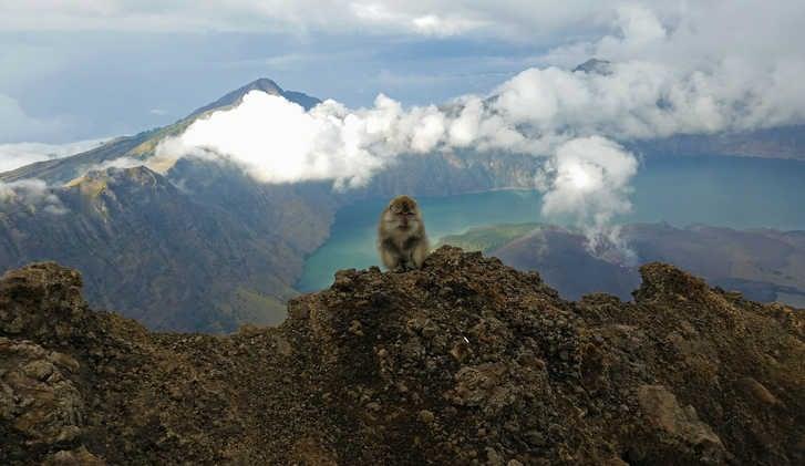 Mt. Rinjani