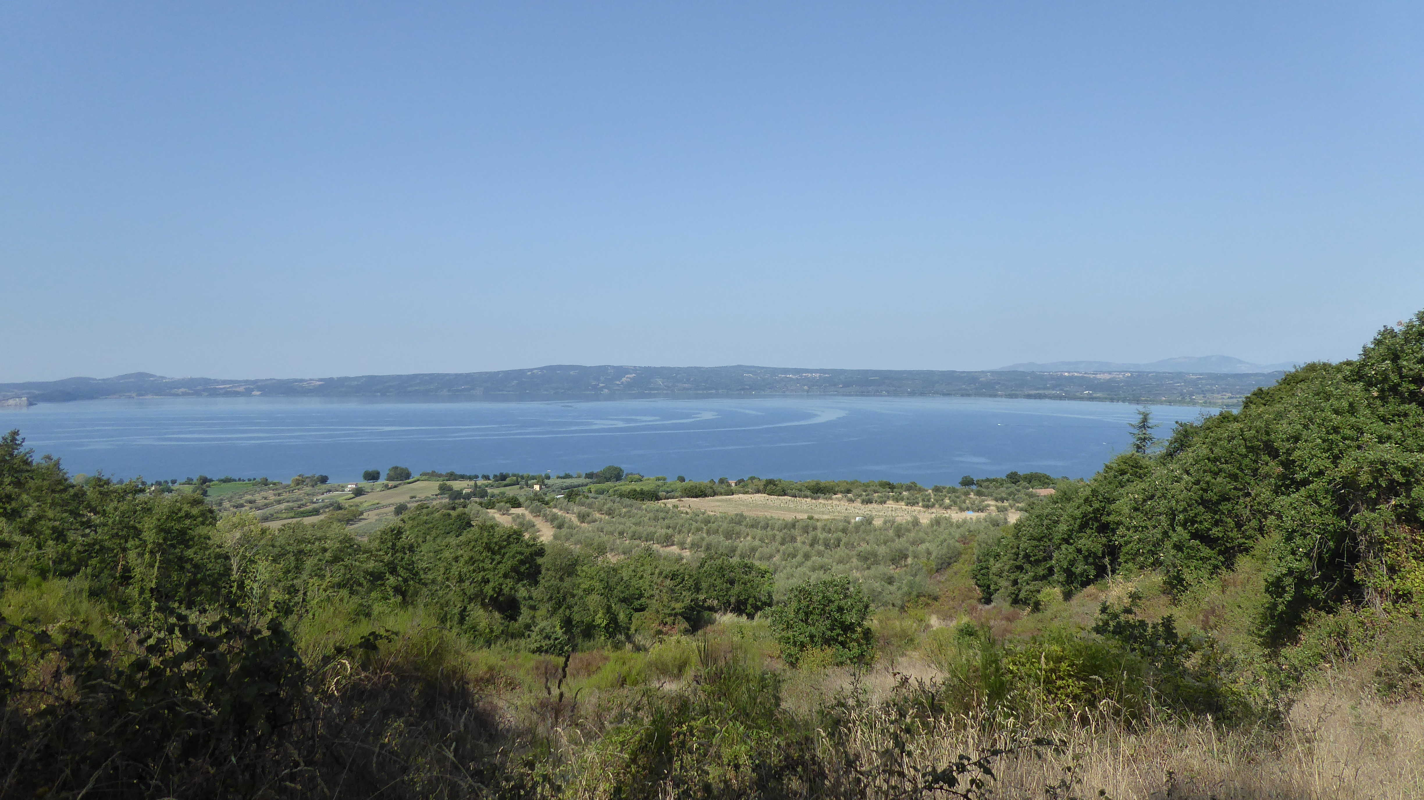 Vineyards and Lake Bolsena, Francigena Way
