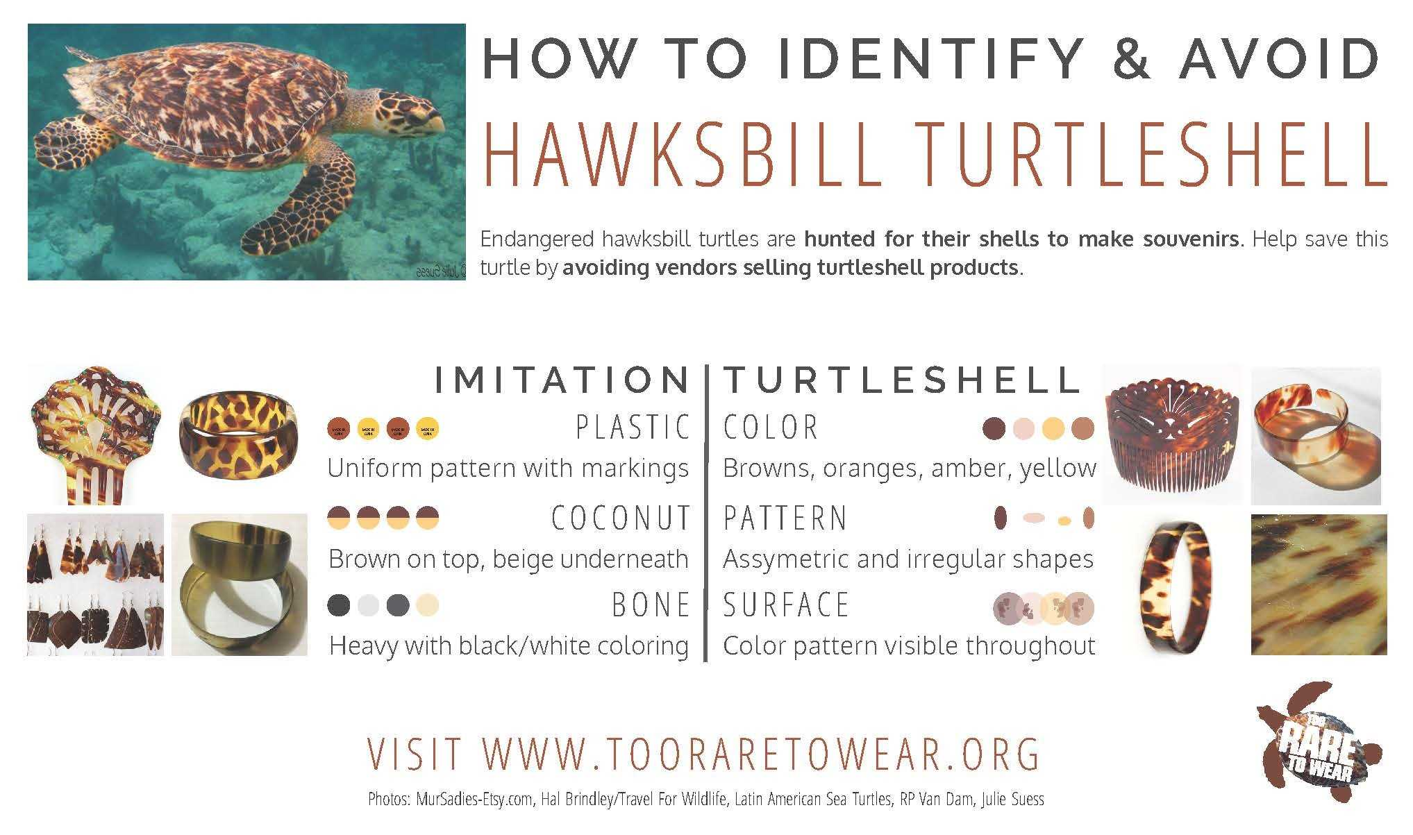 Too Rare to Wear: how to identify turtleshell